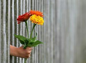 flores para mujeres